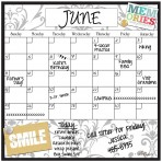 Monthly/Weekly Calendar Magnet Set: Gray Damask